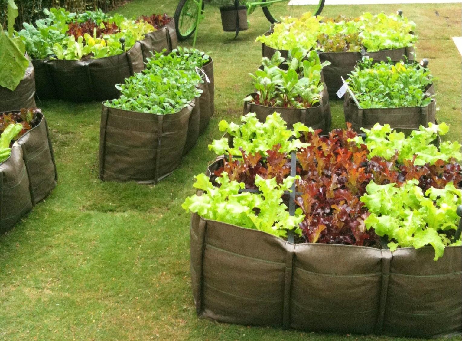 gustavo horta jardim : gustavo horta jardim:Hortas – Arte Vegetal Paisagismo – Projeto Paisagístico e