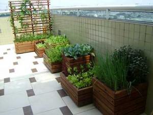 Jardins-Pequenos-3