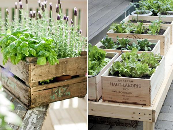 mini jardim de temperos : mini jardim de temperos:uso de materiais reciclados além de contribuir com a