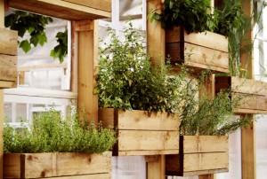 mini-horta-suspensa-caixotes