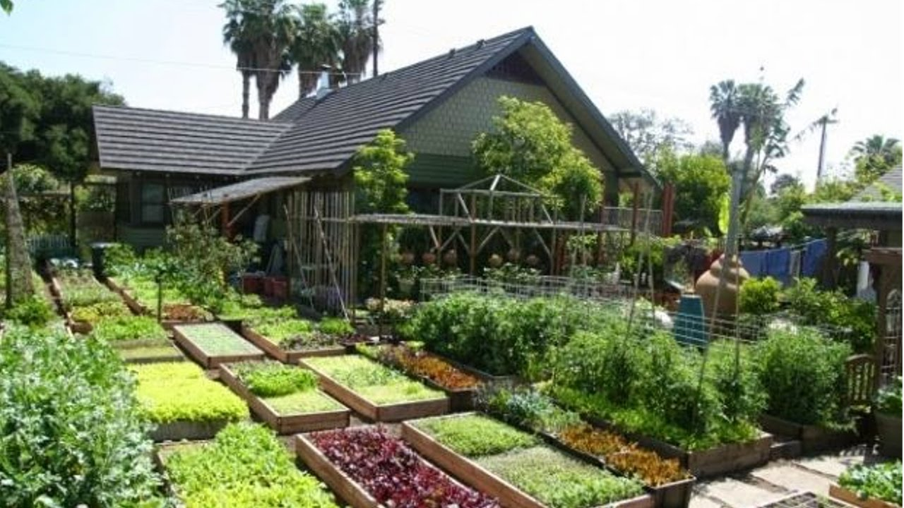 Como montar uma horta arte vegetal for Como criar caracoles de jardin